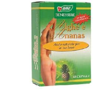 ALGHE ANANAS 48CPS