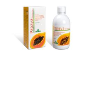 PAPAYA FERMENTATA 500ML