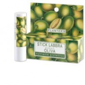 PLANTERS STICK OLIVA